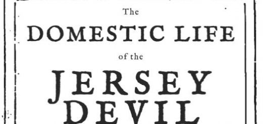 domestic-life-of-the-jersey-devil-cover