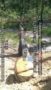 high crossing. L.39.7681937_-74.6437328 D.80 T.20150810_110512
